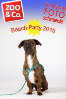 BeachParty_Zoo_Co_2015_07-110