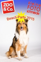 BeachParty_Zoo_Co_2015_07-112