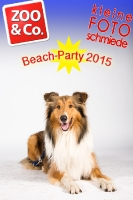 BeachParty_Zoo_Co_2015_07-113