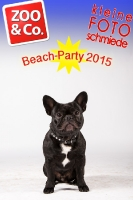 BeachParty_Zoo_Co_2015_07-116