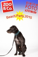 BeachParty_Zoo_Co_2015_07-118