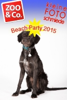 BeachParty_Zoo_Co_2015_07-119