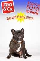 BeachParty_Zoo_Co_2015_07-120