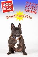 BeachParty_Zoo_Co_2015_07-121