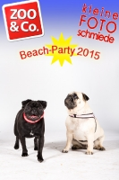 BeachParty_Zoo_Co_2015_07-122