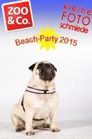 BeachParty_Zoo_Co_2015_07-125