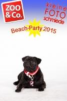 BeachParty_Zoo_Co_2015_07-126