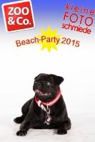 BeachParty_Zoo_Co_2015_07-127