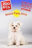 BeachParty_Zoo_Co_2015_07-128