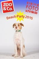BeachParty_Zoo_Co_2015_07-132