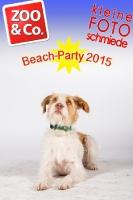 BeachParty_Zoo_Co_2015_07-134