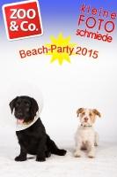 BeachParty_Zoo_Co_2015_07-136