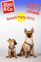BeachParty_Zoo_Co_2015_07-141