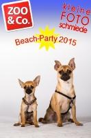 BeachParty_Zoo_Co_2015_07-142