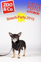 BeachParty_Zoo_Co_2015_07-146