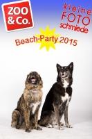 BeachParty_Zoo_Co_2015_07-155