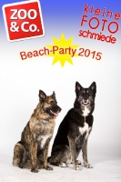 BeachParty_Zoo_Co_2015_07-156