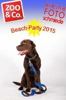 BeachParty_Zoo_Co_2015_07-158