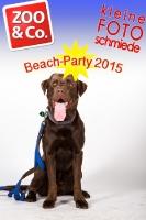 BeachParty_Zoo_Co_2015_07-160