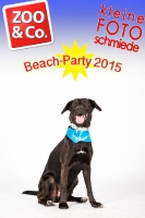 BeachParty_Zoo_Co_2015_07-164