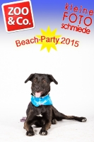 BeachParty_Zoo_Co_2015_07-166