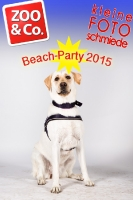 BeachParty_Zoo_Co_2015_07-168