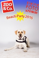 BeachParty_Zoo_Co_2015_07-169