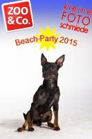 BeachParty_Zoo_Co_2015_07-173