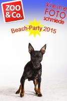 BeachParty_Zoo_Co_2015_07-174