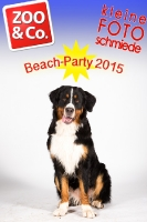 BeachParty_Zoo_Co_2015_07-175