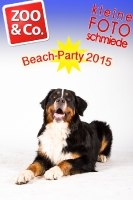 BeachParty_Zoo_Co_2015_07-176