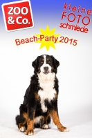 BeachParty_Zoo_Co_2015_07-177