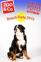 BeachParty_Zoo_Co_2015_07-178