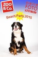 BeachParty_Zoo_Co_2015_07-179