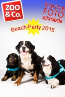 BeachParty_Zoo_Co_2015_07-180