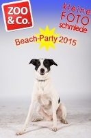 BeachParty_Zoo_Co_2015_07-183