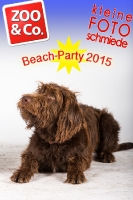 BeachParty_Zoo_Co_2015_07-185