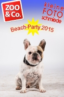 BeachParty_Zoo_Co_2015_07-189