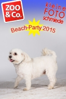 BeachParty_Zoo_Co_2015_07-190