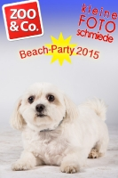 BeachParty_Zoo_Co_2015_07-191