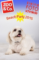 BeachParty_Zoo_Co_2015_07-192