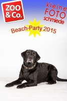 BeachParty_Zoo_Co_2015_07-193