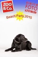BeachParty_Zoo_Co_2015_07-194