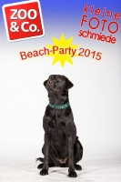 BeachParty_Zoo_Co_2015_07-199