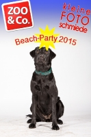 BeachParty_Zoo_Co_2015_07-200