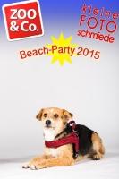 BeachParty_Zoo_Co_2015_07-242