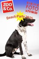 BeachParty_Zoo_Co_2015_07-245