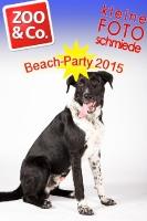 BeachParty_Zoo_Co_2015_07-246