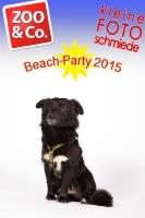 BeachParty_Zoo_Co_2015_07-247