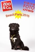 BeachParty_Zoo_Co_2015_07-248